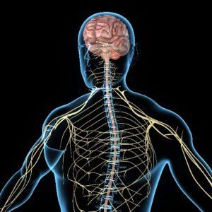 Sacral neuromodulation therapy Reno