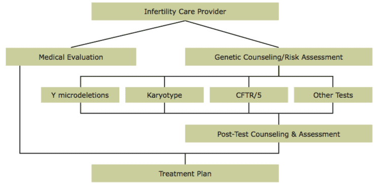 Evaluate Male Genetic Infertility